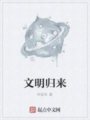 《文明归来》作者:林安年