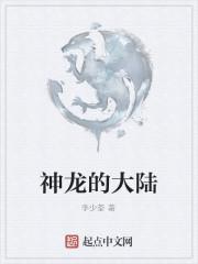 《神龙的大陆》作者:李少荃