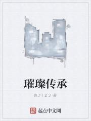 《璀璨传承》作者:疯子123