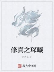 《修真之琛曦》作者:安清弦