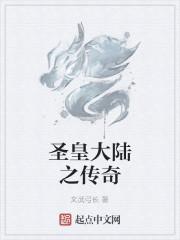 《圣皇大陆之传奇》作者:文武弓长