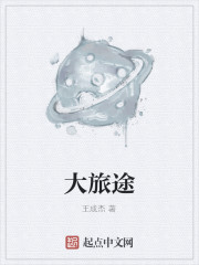 《大旅途》作者:王成杰