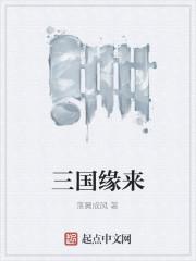 《三国缘来》作者:落翼成风