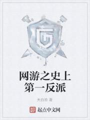 《网游之史上第一反派》作者:大白脸