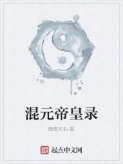 《混元帝皇录》作者:雨落天心