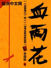 《盗墓笔记:血雨花》作者:李国凯