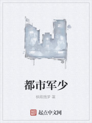 《都市军少》作者:枫能残梦