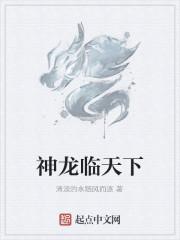 《神龙临天下》作者:清淡的水随风而逐