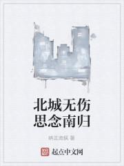 《北城无伤思念南归》作者:纳兰流枫