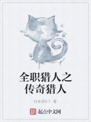 《全职猎人之传奇猎人》作者:白水泉01