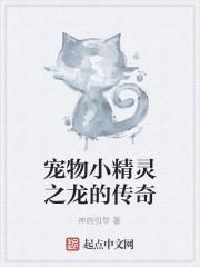 《宠物小精灵之龙的传奇》作者:神的引导