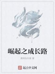 《崛起之成长路》作者:潇风独行客
