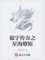 《狼宇传奇之星海燎原》作者:奇刻小子