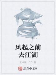 《风起之前去江湖》作者:王卓诚.QD