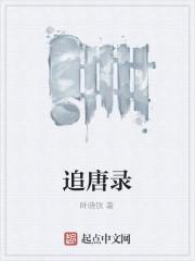 《追唐录》作者:叶晓钦