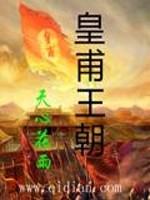 《皇甫王朝》作者:天心花雨
