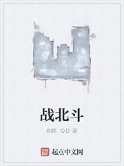 《战北斗》作者:肖鹏.QD
