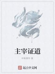 《主宰证道》作者:林家晨轩