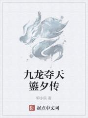 《九龙夺天鎏夕传》作者:柳小疯