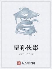 《皇孙侠影》作者:久海轩.QD