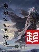 《穿越之九界传说》作者:魔方手