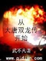《从大唐双龙传开始》作者:武不凡