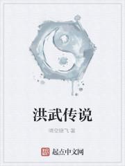 《洪武传说》作者:晴空晓飞