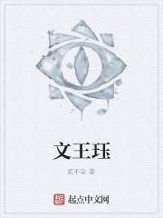 《文王珏》作者:贰不完