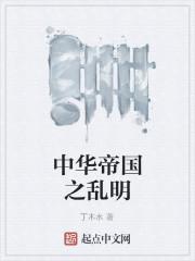 《中华帝国之乱明》作者:丁木水