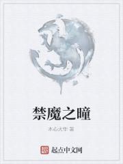《禁魔之曈》作者:木心火华