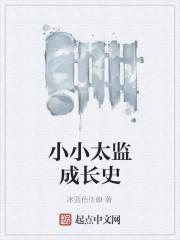 《小小太监成长史》作者:冰蓝色信仰
