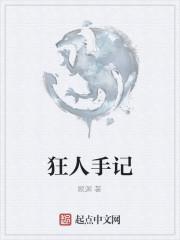 《狂人手记》作者:顾渊