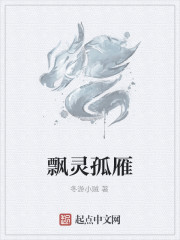 《飘灵孤雁》作者:冬游小贼