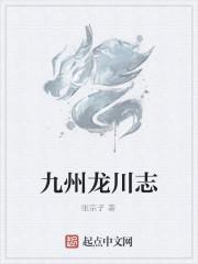 《九州龙川志》作者:张宗子