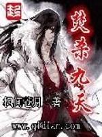《焚杀九天》作者:枫间苍月