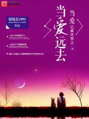 《当爱已成往事之当爱远去》作者:徐晓东1991