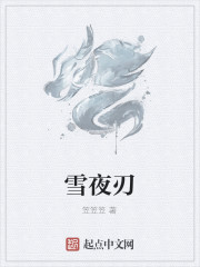 《雪夜刃》作者:笠笠笠