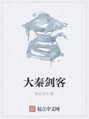《大秦剑客》作者:独步武林