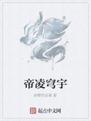 《帝凌穹宇》作者:妖孽的逆袭