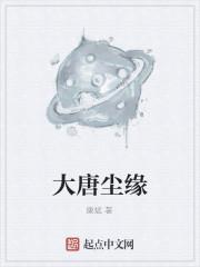 《大唐尘缘》作者:康斌
