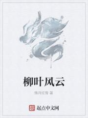 《柳叶风云》作者:殇月红雪