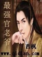 《最强官老爷》作者:西枫