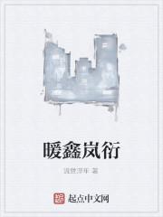 《暖鑫岚衍》作者:流世浮年