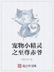 《宠物小精灵之至尊赤爷》作者:沉默大笑