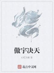 《傲宇决天》作者:心忆为魔