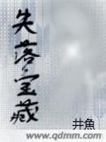《失落宝藏》作者:井魚