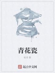 《青花瓷》作者:花珏