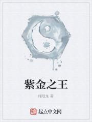 《紫金之王》作者:月阳龙