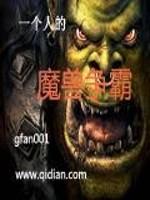 《一个人的魔兽争霸》作者:gfan001