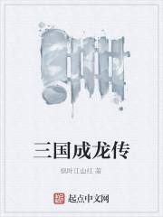 《三国成龙传》作者:枫叶江山红